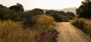 Sunset in Pilanesberg