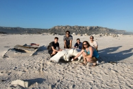 David, Vince, Bonnie, Caleb, and Jordi with the whale skull