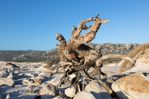Olifantsbos Beach