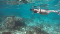 Snorkeling at Pink Beach