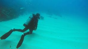 Our divemaster spotting a stingray
