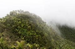 Foggy hills below Mt. Britton