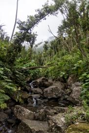 A roadside waterfall