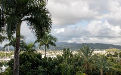 The view from the Fajardo Inn's lobby