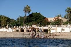 Children swimming in the Nile