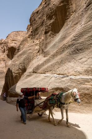 A carriage barreling through the Siq