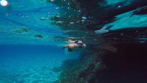 Vince Snorkeling
