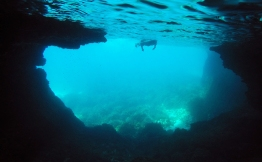 Snorkeling under the rock arch